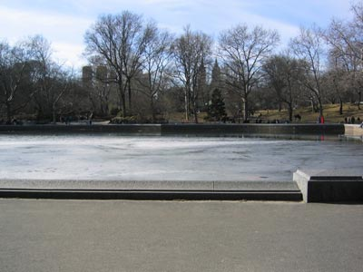 Laurence Polatsch New York's Central Park Bench